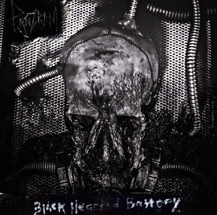 "Kataton na albu ,,Black Hearted Battery""."
